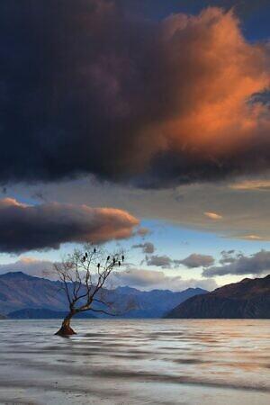 Lake Wanaka Mood