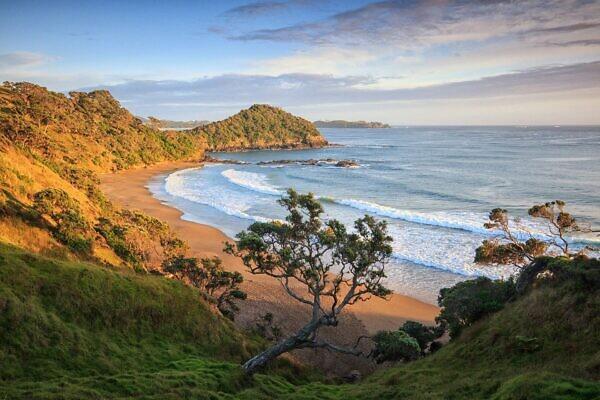 Daisy Bay 2, Tutukaka Coast