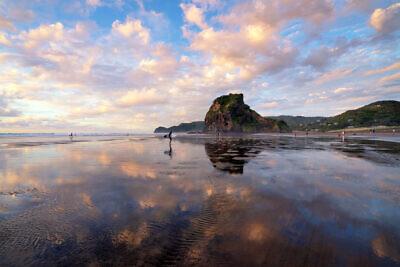 Piha Dreamy Reflections